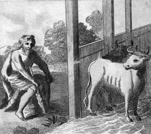 Авгиевы конюшни