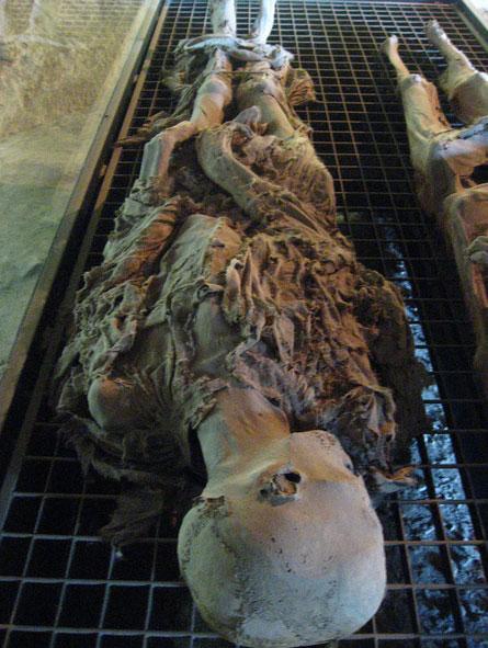 музей мумий, который расположен в подвале церкви Святого Стефана